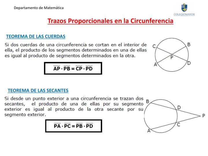Trazos proporcionales en la circunferencia