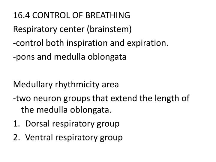 16.4 CONTROL OF BREATHING