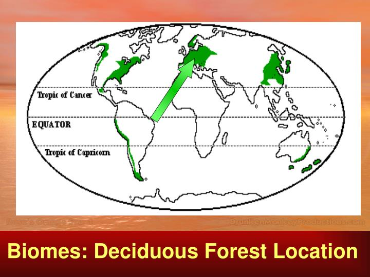 Biomes: Deciduous Forest Location