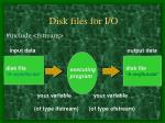 disk files for i o