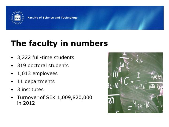The faculty in numbers