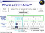 what is a cost action