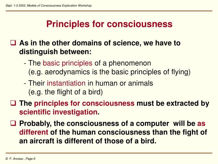 Principles for consciousness