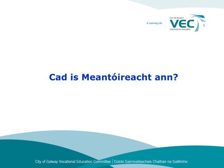 Cad is meant ireacht ann