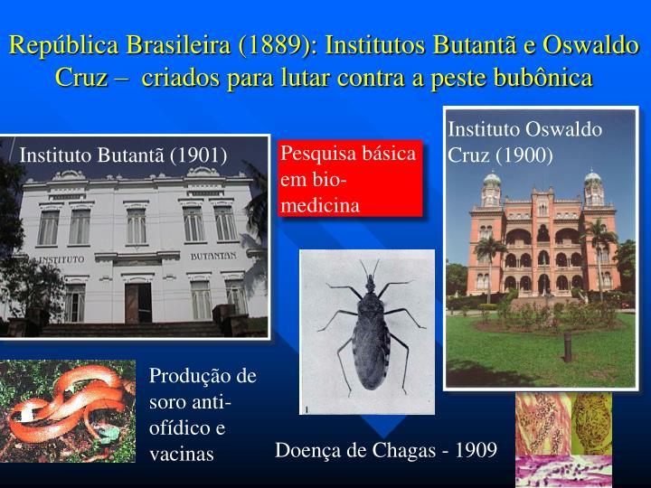 República Brasileira (1889): Institutos Butantã e Oswaldo Cruz –  criados para lutar contra a peste bubônica