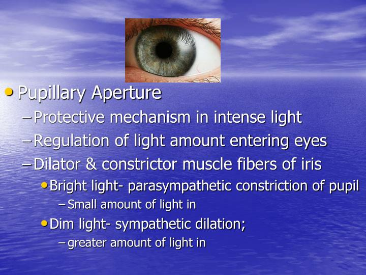 Pupillary Aperture