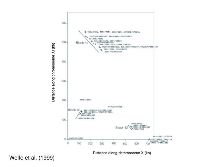 Wolfe et al. (1999)