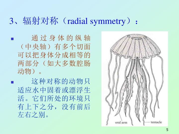 3、辐射对称(