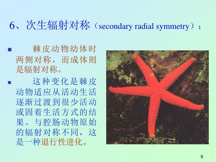 6、次生辐射对称