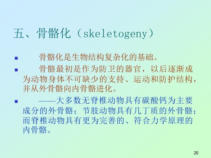 五、骨骼化(