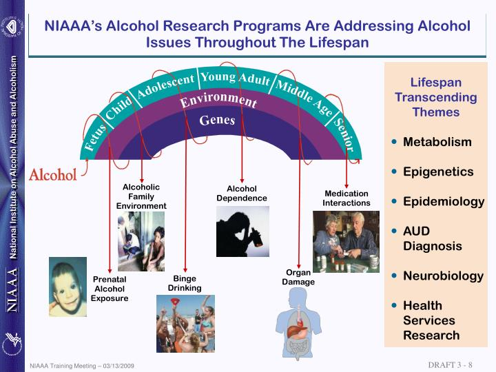 impacts of alcoholism on family welfare essay Substance use disorders (suds) are associated with numerous medical, psychiatric, psychological, spiritual, economic, social, family, and legal problems, creating a significant burden for affected individuals, their families, and society this paper focuses on the effects of suds on family and.
