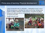 prime area of learning physical development