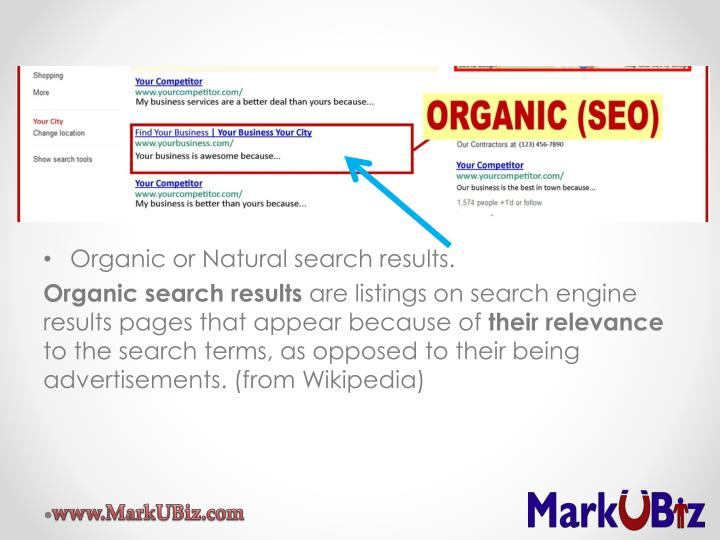 Organic or Natural search results.
