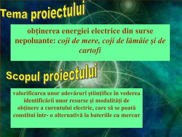 Tema proiectului