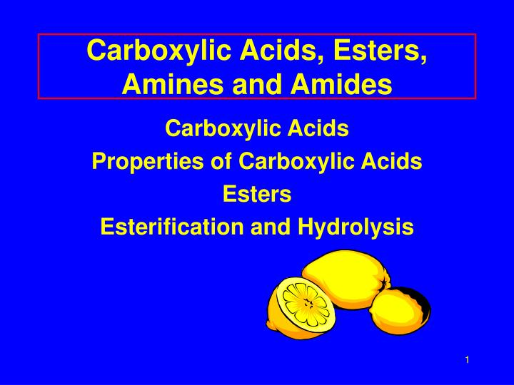 PPT - Carboxylic Acids, Esters, Amines and Amides PowerPoint