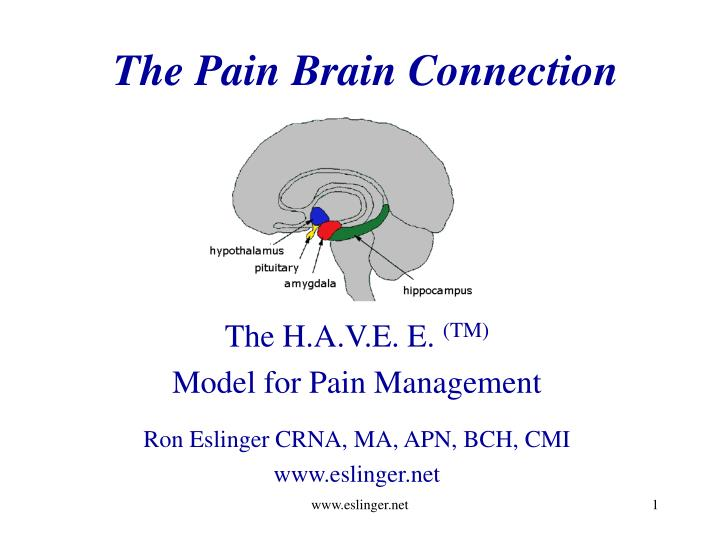The Pain Brain Connection
