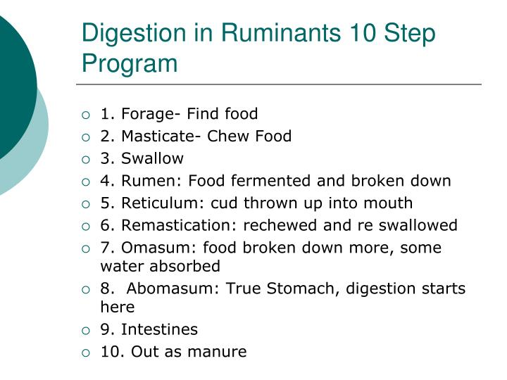 Digestion in Ruminants 10 Step Program