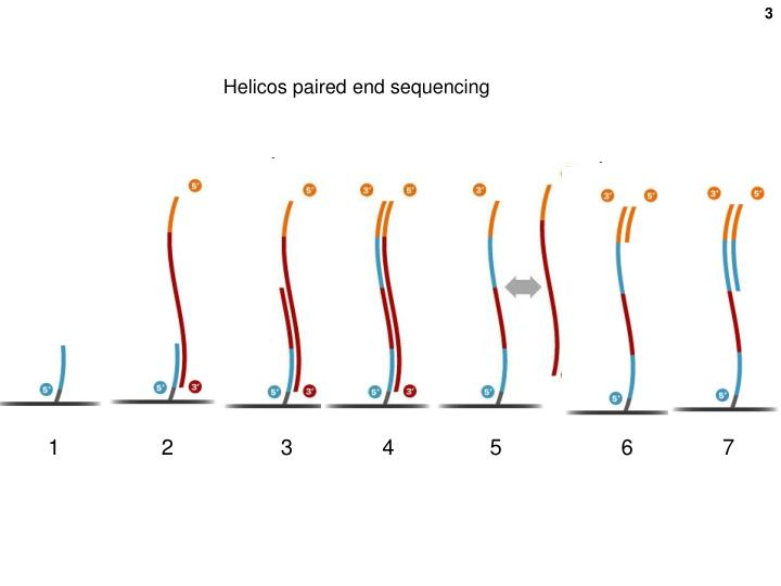 Helicos paired end sequencing