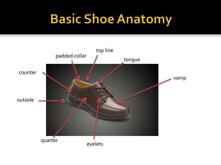 Basic shoe anatomy1