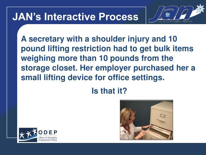 JAN's Interactive Process
