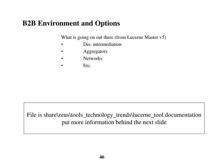 B2B Environment and Options