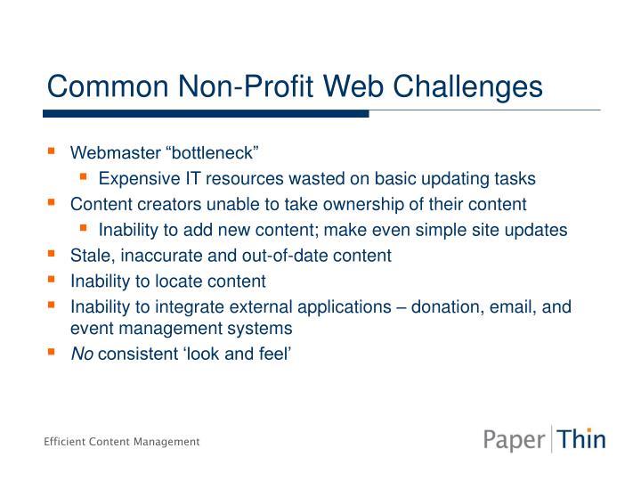 Common Non-Profit Web Challenges