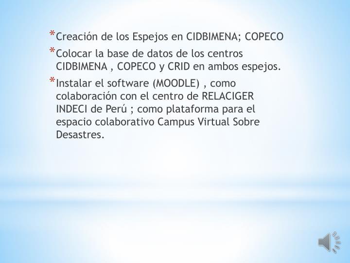 Creación de los Espejos en CIDBIMENA; COPECO