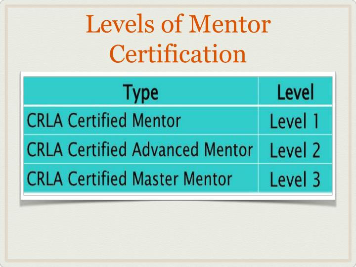 Ppt International Mentor Training Program Certification Powerpoint