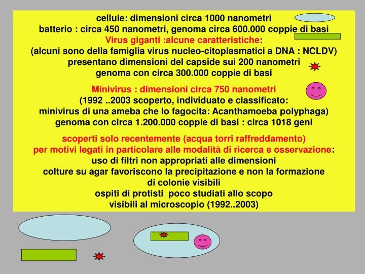 Cellule: dimensioni circa 1000 nanometri