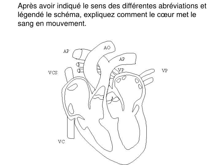 Après avoir indiqué le sens des différentes abréviations et légendé le schéma, expliquez comment le cœur met le sang en mouvement.