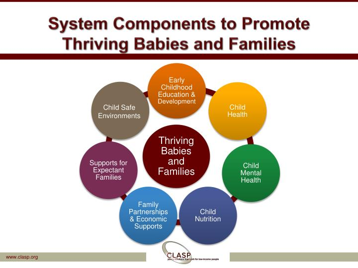 System Components to Promote Thriving Babies and Families