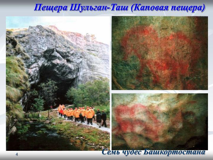 Пещера Шульган-Таш (Каповая пещера)
