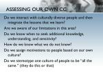 assessing our own cc