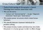 cross cultural skills