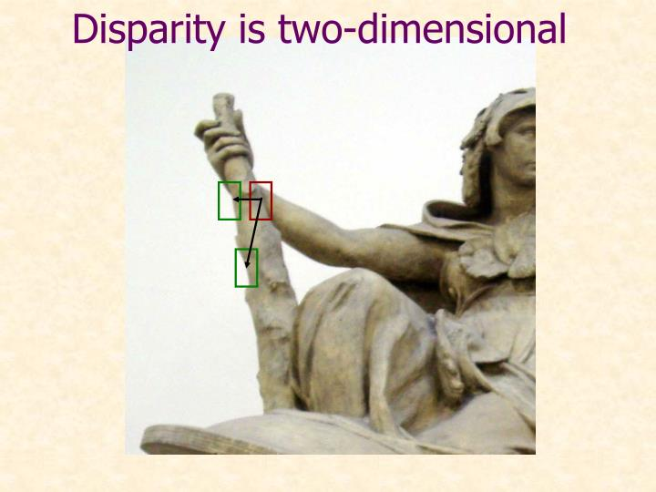Disparity is two-dimensional