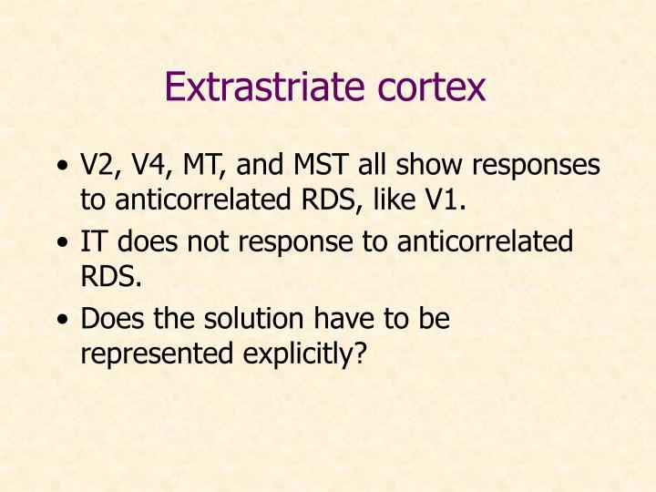 Extrastriate cortex