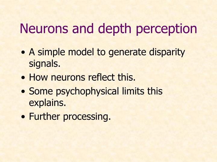 Neurons and depth perception