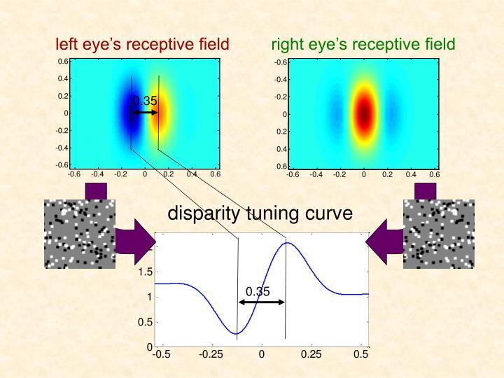 disparity tuning curve