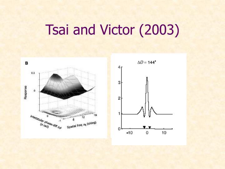 Tsai and Victor (2003)