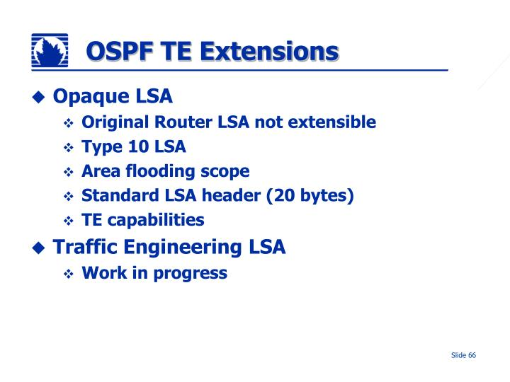 OSPF TE Extensions