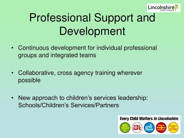 Professional Support and Development