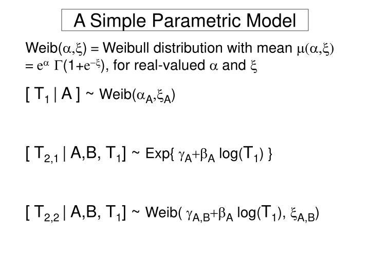 A Simple Parametric Model