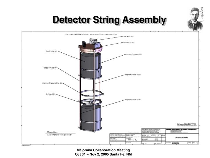 Detector String Assembly