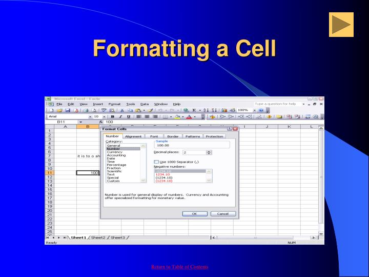 Formatting a Cell
