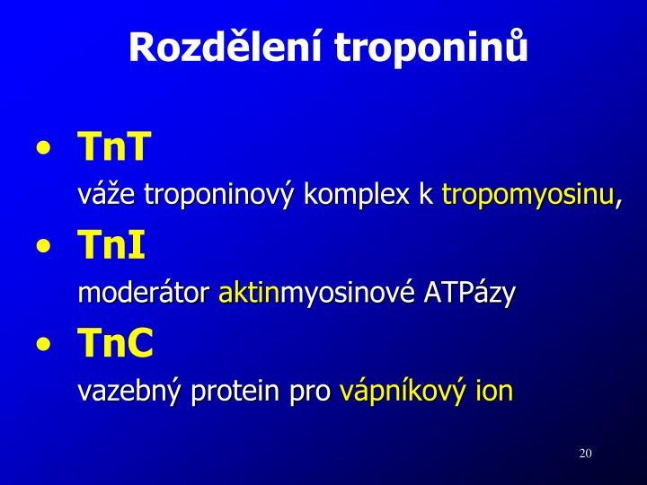Rozdělení troponinů