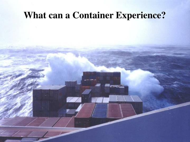 What can a Container Experience?