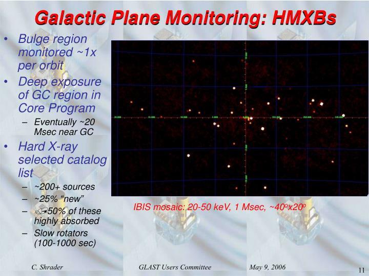 Galactic Plane Monitoring: HMXBs