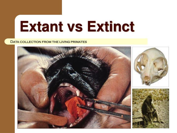 Extant vs Extinct
