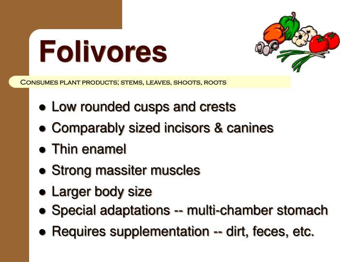 Folivores