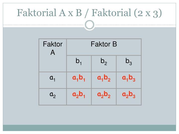 Faktor A
